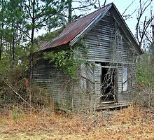 Old  Country Store by Linda Yates