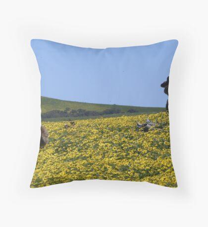 Deep Creek, Fleurieu Peninsula Throw Pillow