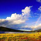 Rainbow by Kym Howard