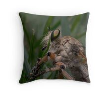 Robber Fly (Asilidae) 1 Throw Pillow