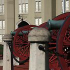 Canons in Color by TomBrower
