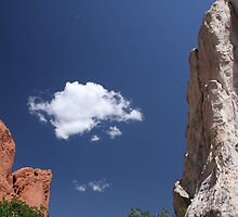 Garden of the Gods by TomBrower