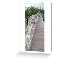 Take a walk on the wild side Greeting Card