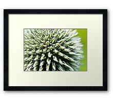 Green and Purple Orb Framed Print