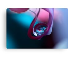 Blue & Pink Canvas Print