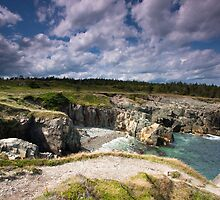 A view of Nova Scotia's rocky coastline by Denise Goldberg