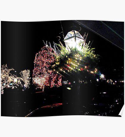 Nassau Street  Christmas  Princeton  Poster