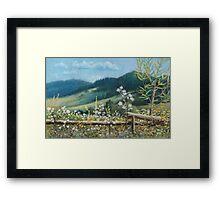Carpathian hills Framed Print