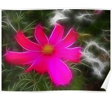 Hot Pink in the Spring Poster