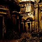 Catacombs at Highgate Cemetery (West) by Richard Pitman