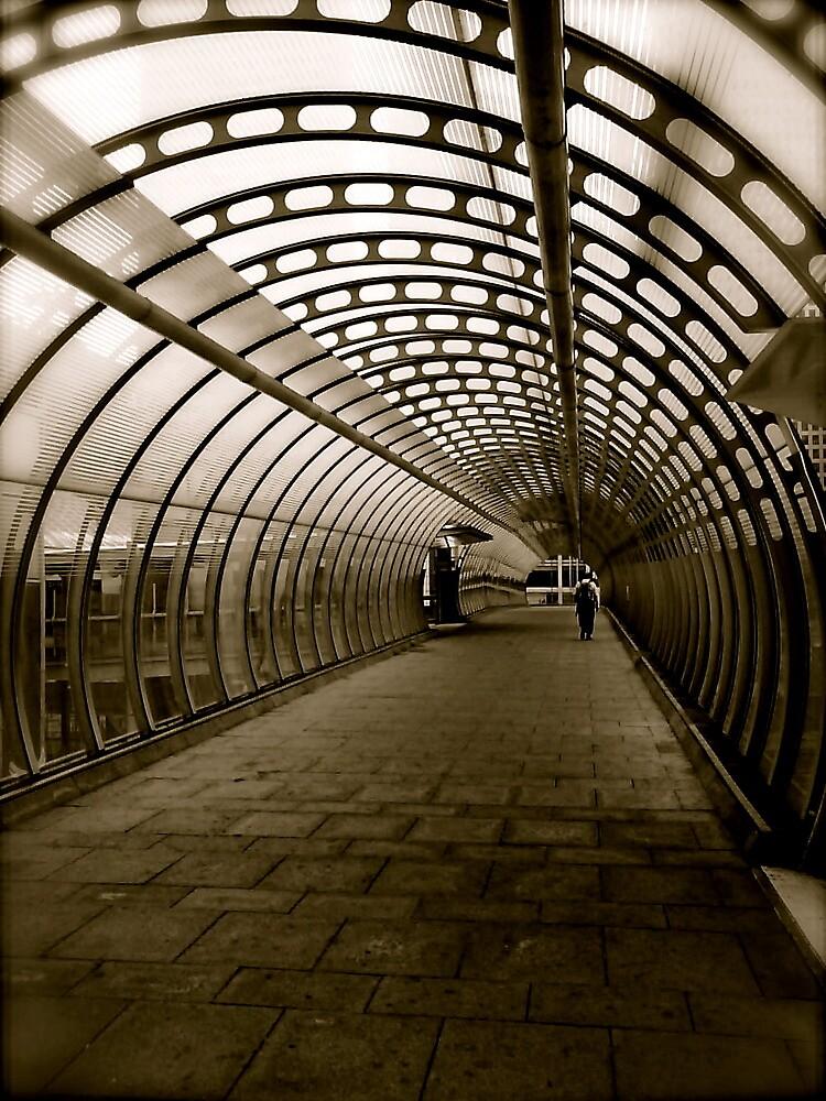 The Long Walk Home by Richard Pitman