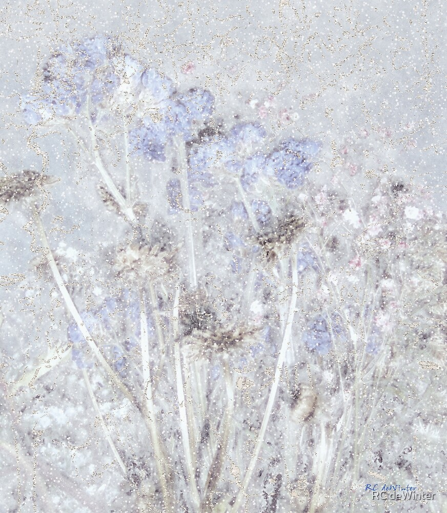 First Snow in the Field by RC deWinter