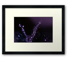 Fibre Optic Framed Print