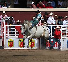Calgary Stampede 2009, #74, Canada. by Felicity McLeod