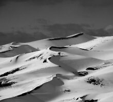 Dunes in Black & White by starbucksgirl26