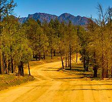 South Australia - Flinders Ranges - Brachina Gorge drive 3 by Geoffrey Thomas