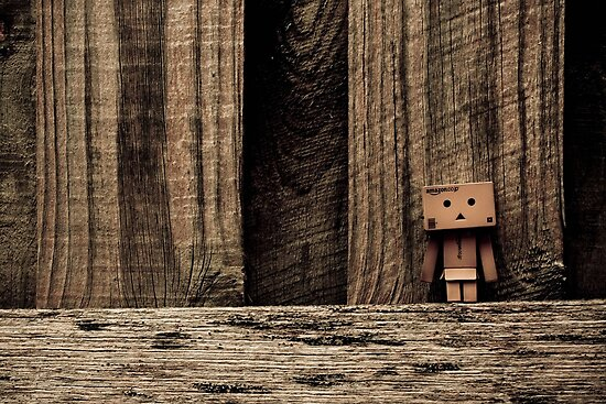 "Danbo - New ""Ranbo Wood"" by jdreamer"