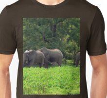 a sprawling Guinea-Bissau landscape Unisex T-Shirt