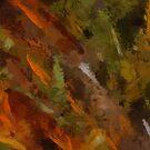 Forest by artsthrufotos