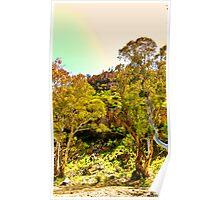 South Australia - Flinders Ranges - Mt Remarkable 1 Poster