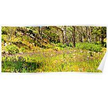 South Australia - Flinders Ranges - Mt Remarkable 3 Poster