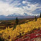 Alaskan Fall Color by Bryan Minnear