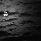 Mostly Full Moon by jesrtl