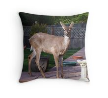 There's a Deer in my Bird-Bath Throw Pillow