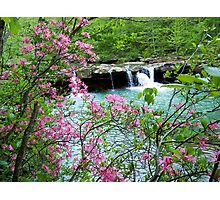 Kings River Falls Dressed In Pink Photographic Print