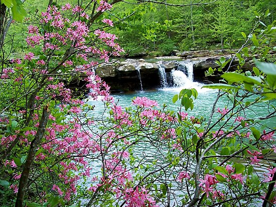 Kings River Falls Dressed In Pink by NatureGreeting Cards ©ccwri