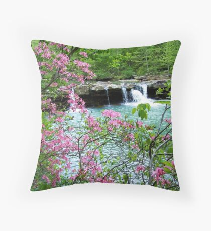 Kings River Falls Dressed In Pink Throw Pillow