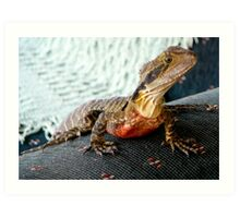 EASTERN BEARDED DRAGON Art Print