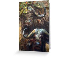 Kruger Park Buffalo Greeting Card