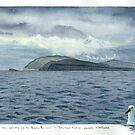 Yellow Nosed Albatross and Storm approaching over Forestier Peninsula Tasmania. by melhillswildart