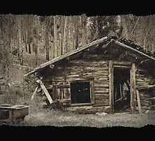 Miners Cabin by Albert Dickson