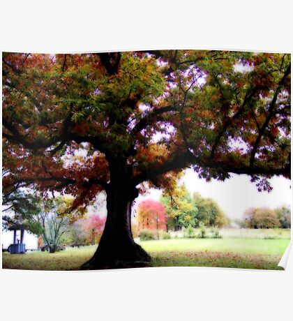 Under The Mighty Oak Tree Poster