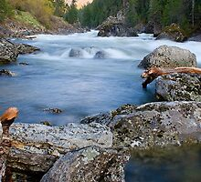 Selway Falls by Kathleen  Bowman