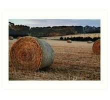 Making Hay,Fresh Water Creek Art Print