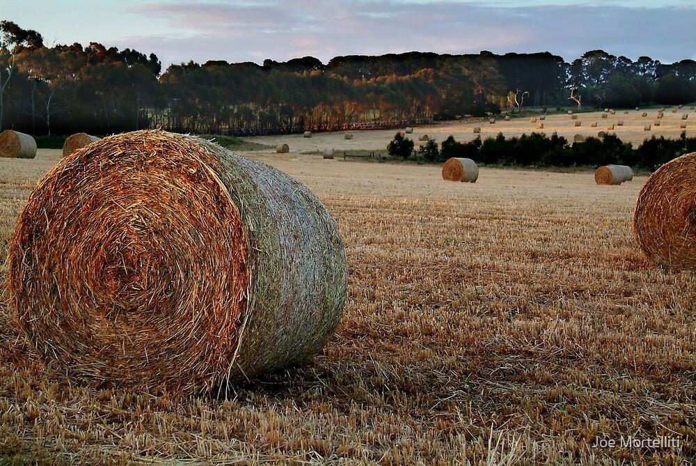Making Hay,Fresh Water Creek by Joe Mortelliti