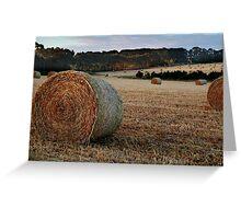 Making Hay,Fresh Water Creek Greeting Card