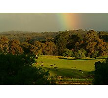 Late Light, Otway Farmlands Photographic Print