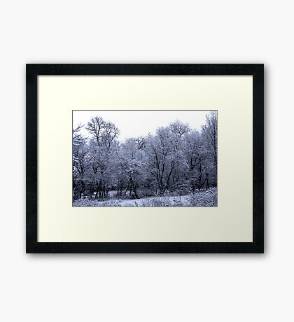 Remnants of winters past 2 Framed Print