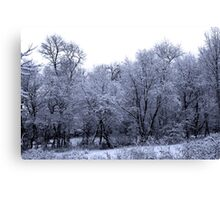 Remnants of winters past 2 Canvas Print