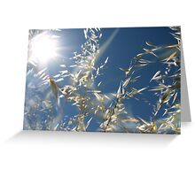 hay dreams Greeting Card