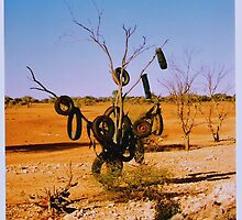 Tyre Tree, NT. by Liz Worth