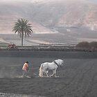 Dusty Earth by Adamdabs