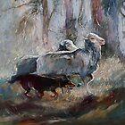 Kelpie Sheep Herder by Pieter  Zaadstra