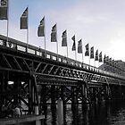 Darling Harbour bridge by missmarbles
