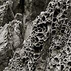 Spongerock by alexschwab