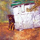 Kennel Day - Australian Kelpie by Pieter  Zaadstra